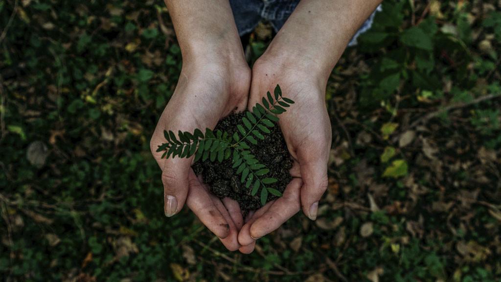 Maquinaria sostenible, un compromiso con el medio ambiente
